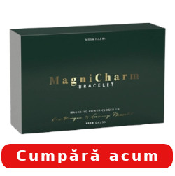 magnicharm bracelet for
